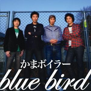 bluejyake1.jpg